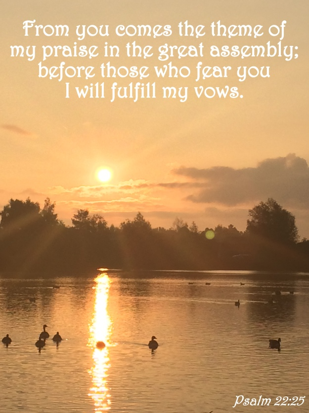 Psalm 22:25