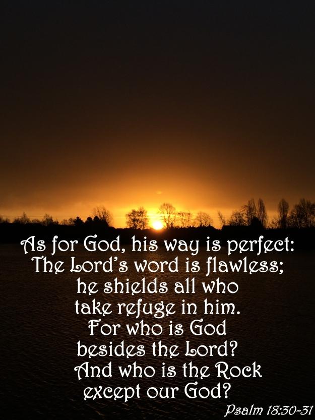 Psalm 18:30-31